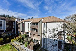 "Photo 18: 403 365 GINGER Drive in New Westminster: Fraserview NW Condo for sale in ""Fraser Mews"" : MLS®# R2542323"