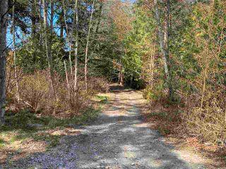 Photo 13: 1815 HARMAN Road: Roberts Creek Land for sale (Sunshine Coast)  : MLS®# R2614266
