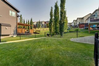 Photo 44: 208 Sunset View: Cochrane Detached for sale : MLS®# A1136470