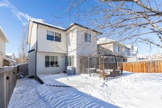 Photo 40: 85 Evansmeade Circle NW in Calgary: Evanston Detached for sale : MLS®# A1067552