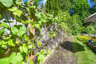 Photo 32: 2518 Dunsmuir Ave in : CV Cumberland House for sale (Comox Valley)  : MLS®# 877028