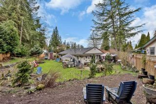 Photo 3: 12440 HOLLY Street in Maple Ridge: West Central House for sale : MLS®# R2555199