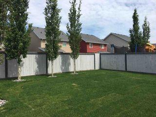 Photo 39: 8528 20 Avenue in Edmonton: Zone 53 House for sale : MLS®# E4245661