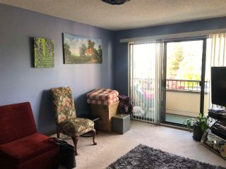 Photo 3: 208 20460 54 Avenue in Langley: Langley City Condo for sale : MLS®# R2577412