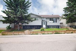 Photo 13: 5719 PINEPOINT Drive NE in Calgary: Pineridge Detached for sale : MLS®# A1031036