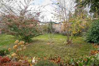Photo 36: 933 KINSAC Street in Coquitlam: Coquitlam West House for sale : MLS®# R2518051