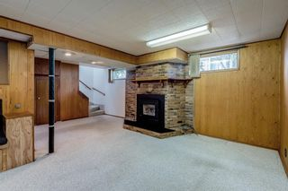 Photo 21: 17 Fay Road SE in Calgary: Fairview Detached for sale : MLS®# A1130756