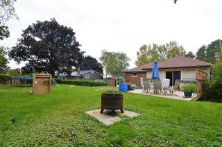 Photo 6: 19 Hope Street: Brighton House (Bungalow-Raised) for sale : MLS®# X5393988
