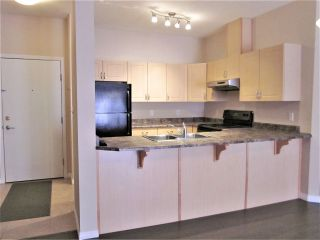 Photo 7: 413 4304 139 Avenue in Edmonton: Zone 35 Condo for sale : MLS®# E4217547
