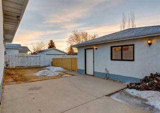 Photo 43: 11039 166 Avenue: Edmonton Detached for sale : MLS®# A1083224