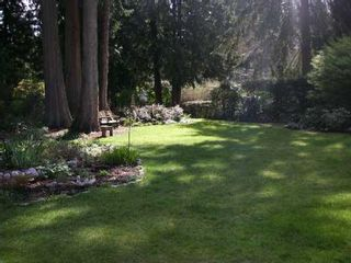 Photo 8: 12446 214TH ST in Maple Ridge: West Central House for sale : MLS®# V581658
