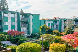 """Photo 25: 207 3901 CARRIGAN Court in Burnaby: Government Road Condo for sale in """"Lougheed Estates II"""" (Burnaby North)  : MLS®# R2515286"""