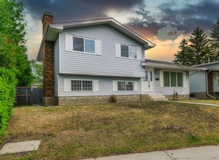 Main Photo: 208 Whiteview Close NE in Calgary: Whitehorn Detached for sale : MLS®# A1126367
