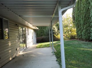 Photo 24: 8313 MAHONIA STREET in Mission: House for sale