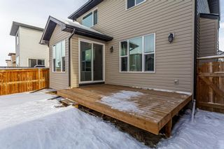 Photo 30: 1200 BRIGHTONCREST Common SE in Calgary: New Brighton Detached for sale : MLS®# A1066654