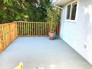Photo 16: 420 Richmond Ave in : Vi Fairfield East House for sale (Victoria)  : MLS®# 874416