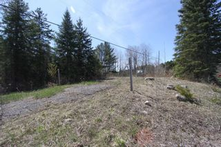 Photo 2: 259 County Rd 41 Road in Kawartha Lakes: Rural Bexley Property for sale : MLS®# X5210398