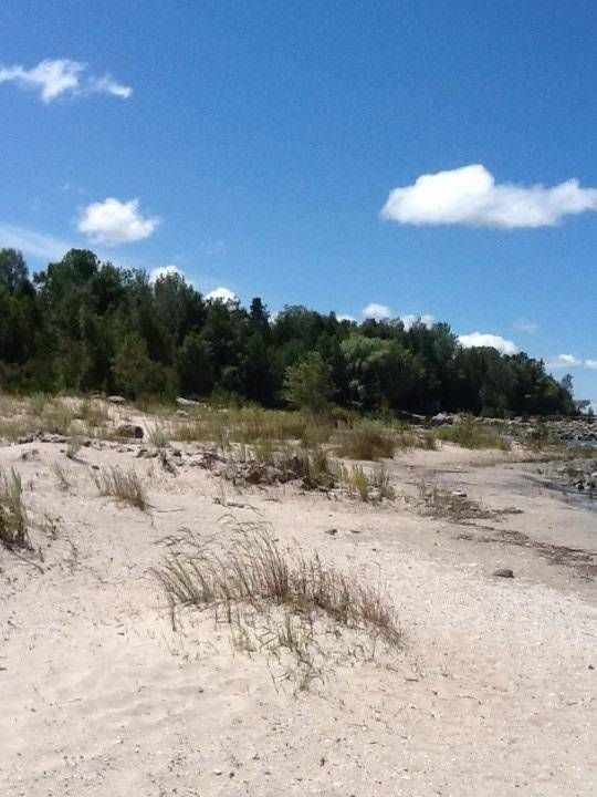 Main Photo: 0*** Sawlog Bay Point Road in Tiny: Rural Tiny Property for sale : MLS®# S5239813