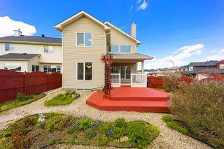 Photo 40: 185 Saddlecreek Point NE in Calgary: Saddle Ridge Detached for sale : MLS®# A1113221