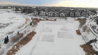 Photo 49: 1413 Coopers Landing SW: Airdrie Detached for sale : MLS®# A1052005