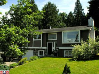 Photo 1: 33398 BABICH Place in Abbotsford: Central Abbotsford House for sale : MLS®# F1216229