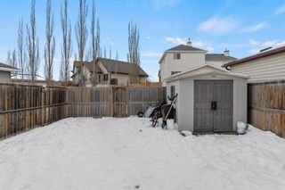 Photo 33: 19 Copperfield Terrace SE in Calgary: Copperfield Detached for sale : MLS®# A1062283