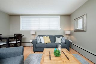 Photo 3: 7 316 22 Avenue SW in Calgary: Mission Apartment for sale : MLS®# A1115911