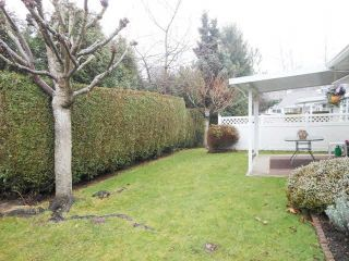 """Photo 19: 119 2460 156 Street in Surrey: King George Corridor Townhouse for sale in """"Country House Estates"""" (South Surrey White Rock)  : MLS®# F1428974"""