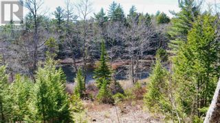 Photo 4: acreage 930 Road in Buckfield: Vacant Land for sale : MLS®# 202108244