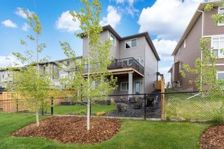 Photo 38: 260 Nolancrest Heights NW in Calgary: Nolan Hill Detached for sale : MLS®# A1117990