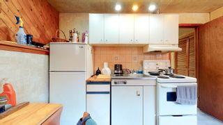 Photo 31: 220 HOMESTEAD Crescent in Edmonton: Zone 35 House for sale : MLS®# E4252303