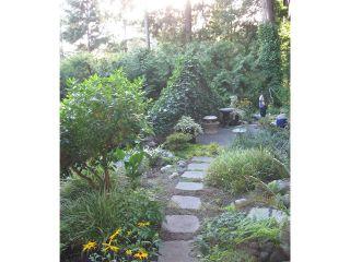 Photo 12: 3801 BAYRIDGE AV in West Vancouver: Bayridge House for sale : MLS®# V1023302