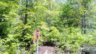 Photo 4: Lot B THOMPSON ROAD in Bonnington: Vacant Land for sale : MLS®# 2459440