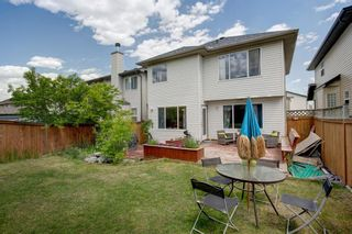 Photo 32: 445 Bridlewood Court SW in Calgary: Bridlewood Detached for sale : MLS®# A1121282