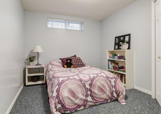 Photo 29: 11 Mt Assiniboine Circle SE in Calgary: McKenzie Lake Detached for sale : MLS®# A1152851