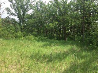 Photo 8: 0 SW-12-03-04-E RAPIDS Road in Dominion City: R17 Farm for sale : MLS®# 202117943