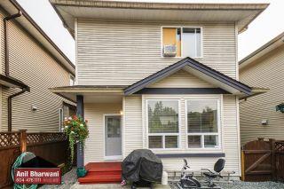 "Photo 53: 24113 102 Avenue in Maple Ridge: Albion House for sale in ""Homestead"" : MLS®# R2499816"