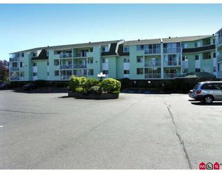 """Photo 1: 101 31850 UNION Avenue in Abbotsford: Abbotsford West Condo for sale in """"Fernwood Manor"""" : MLS®# F2810921"""