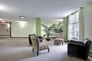 Photo 32: 321 6315 135 Avenue in Edmonton: Zone 02 Condo for sale : MLS®# E4255490