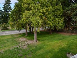 Photo 5: 314 3270 Ross Rd in : Na Uplands Condo for sale (Nanaimo)  : MLS®# 871193