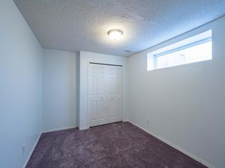 Photo 23: 623 Taradale Drive NE in Calgary: Taradale Detached for sale : MLS®# A1127134