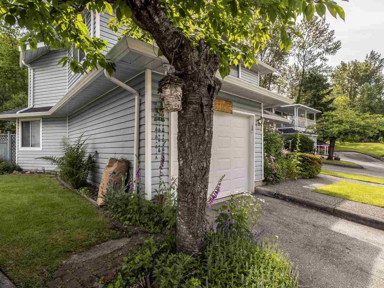"""Photo 3: Photos: 127 22555 116 Avenue in Maple Ridge: East Central Townhouse for sale in """"HILLSIDE"""" : MLS®# R2493046"""