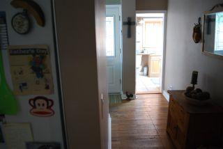 Photo 24: 21201 WICKLUND Avenue in Maple Ridge: Northwest Maple Ridge House for sale : MLS®# R2562891
