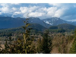 Photo 34: 23095 GILBERT Drive in Maple Ridge: Silver Valley House for sale : MLS®# R2542077