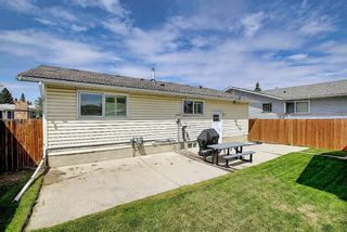 Photo 27: 5919 Pinepoint Drive NE in Calgary: Pineridge Detached for sale : MLS®# A1111211