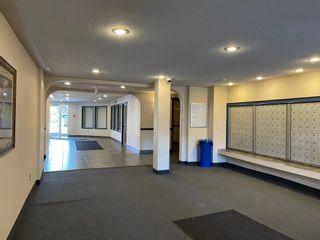 Photo 7: 533 11325 83 Street in Edmonton: Zone 05 Condo for sale : MLS®# E4256939