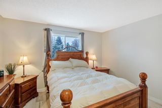 Photo 11: 4131 Doverview Drive SE in Calgary: Dover Detached for sale : MLS®# A1063702