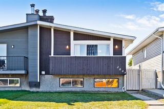 Main Photo: 2809 46 Street SE in Calgary: Dover Semi Detached for sale : MLS®# A1148924
