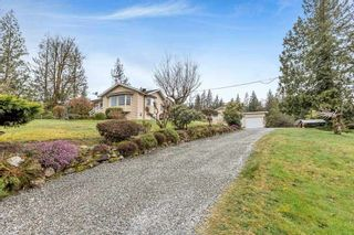 Photo 4: 30977 Dewdney Trunk  Road in Mission: Stave Falls House for sale : MLS®# R2575747