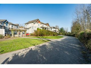 """Photo 35: 36 20120 68 Avenue in Langley: Willoughby Heights Townhouse for sale in """"The Oaks"""" : MLS®# R2560815"""
